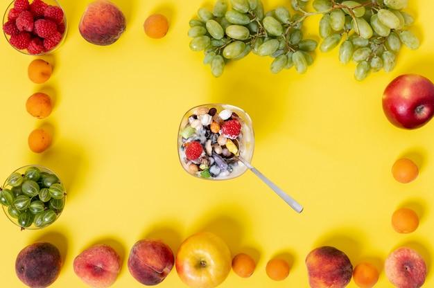 Yaourt Musli Plat Dans Un Cadre De Fruits Photo gratuit