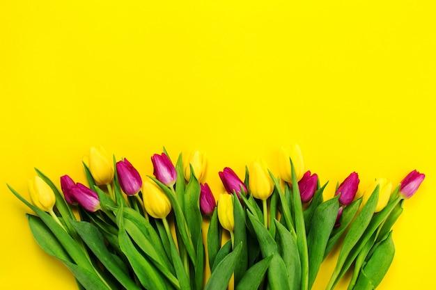 beau jaune fleur pourpre au-dessus Photo gratuit
