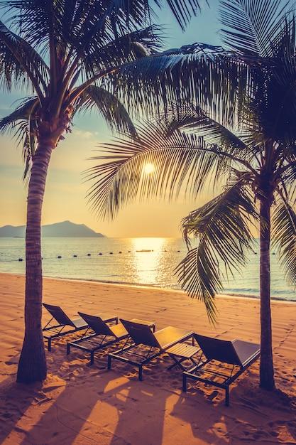 Belle plage et la mer avec palmier t l charger des - Image palmier ...