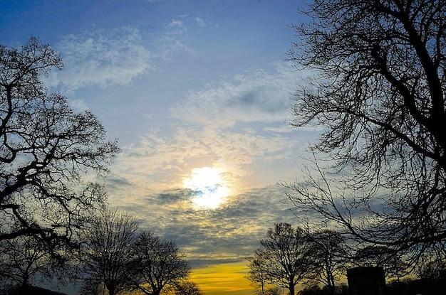coucher de soleil nature nuages paysage arbre ciel photo gratuit - Arbre Ciel