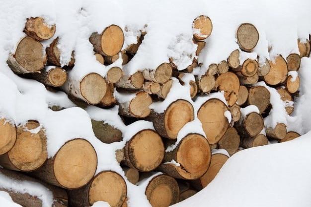 coupe d 39 arbres nergie logarithmique mat riau bois en hiver t l charger des photos gratuitement. Black Bedroom Furniture Sets. Home Design Ideas