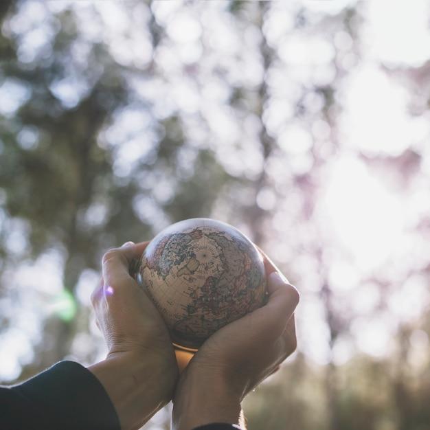 Cueillir les mains avec un petit globe dans la nature Photo gratuit