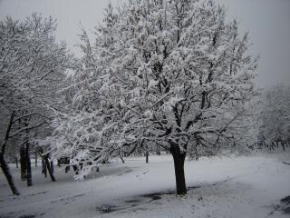 d hiver conte de la neige t l charger des photos gratuitement. Black Bedroom Furniture Sets. Home Design Ideas