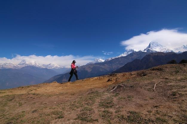 Femmes randonnées avec sac à dos tenant des bâtons de trekking haut dans les montagnes couvertes de neige en été. Observation du paysage pendant une courte pause Photo gratuit