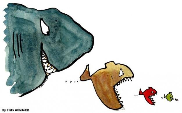 Groupe de poissons pr dateurs hi rarchie poissons dominent for Manger pour poisson