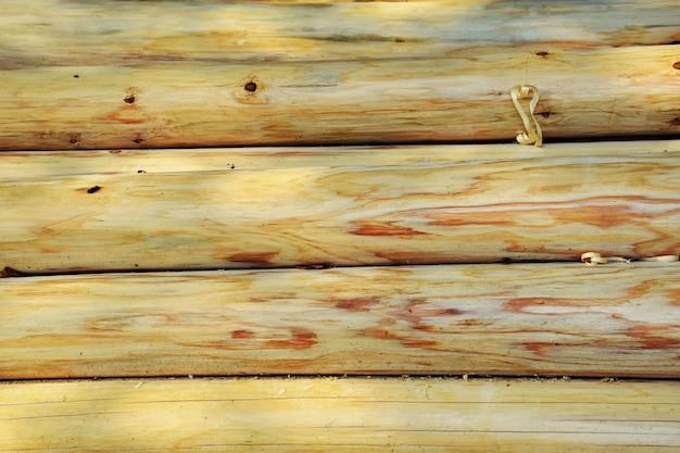 grumes en bois sans corce t l charger des photos gratuitement. Black Bedroom Furniture Sets. Home Design Ideas