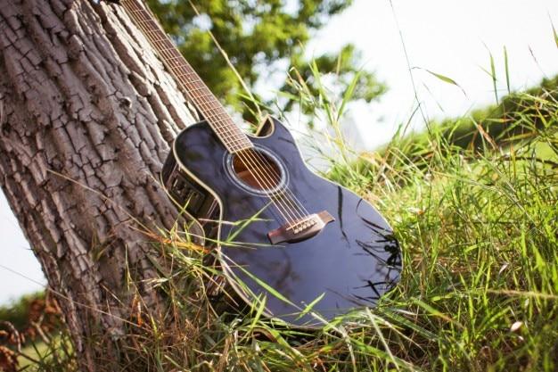 guitare dans la nature t l charger des photos gratuitement. Black Bedroom Furniture Sets. Home Design Ideas