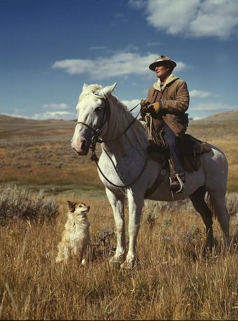 homme nuages ciel paysage cheval leveur de chien photo gratuit
