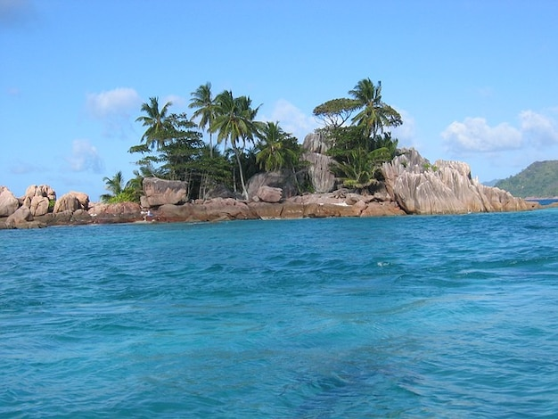 Sur mon île - Marie-Louise Gay
