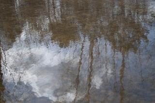 Miroir de l 39 eau t l charger des photos gratuitement for Miroir de l eau