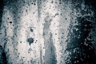 mur en moellons Photo gratuit