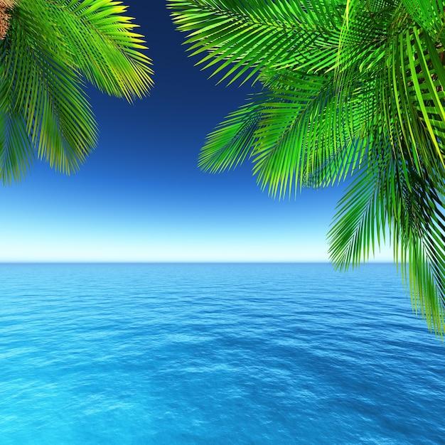 Paysage d 39 t avec des palmiers t l charger des photos for Ete wallpaper