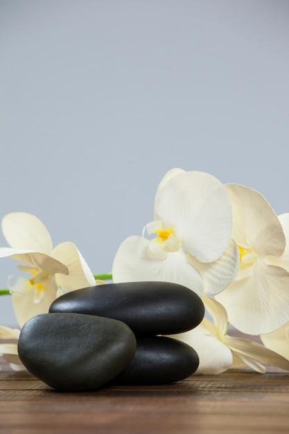 pile de cailloux avec des fleurs
