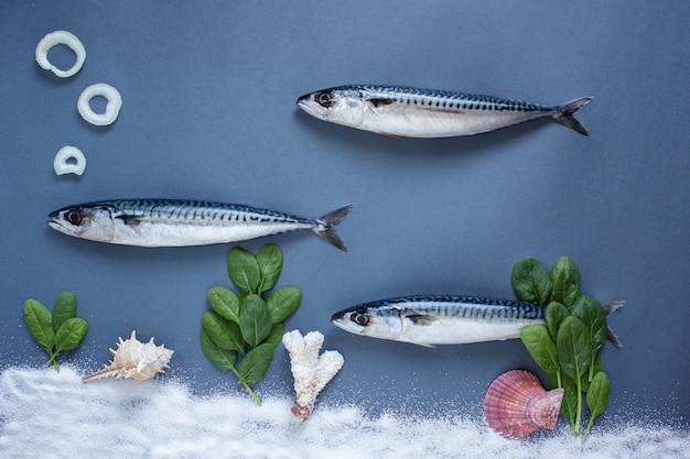 poisson frais d licieux sur fond bleu poisson aux herbes aromatiques oignon p che au concept. Black Bedroom Furniture Sets. Home Design Ideas