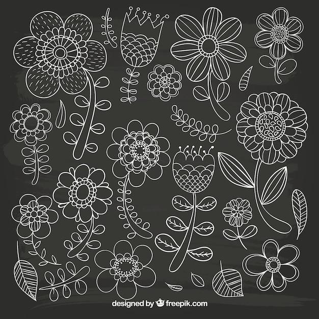 Sketchy fleurs sur tableau noir t l charger des vecteurs for Ecrire sur un tableau noir