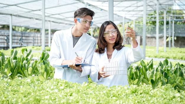 2 gli scienziati hanno esaminato la qualità dell'insalata e della lattuga biologica di verdure da una fattoria idroponica e le hanno registrate negli appunti. Foto Premium