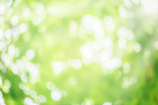 Sfondo di natura astratta. natura verde del bokeh. bokeh verde fuori fuoco sfondo dalla foresta naturale. Foto Premium