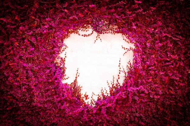 Fondo astratto della parete delle foglie di rosa. Foto Premium