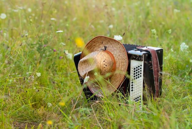 Fisarmonica con il primo piano del cappello sulla natura Foto Premium