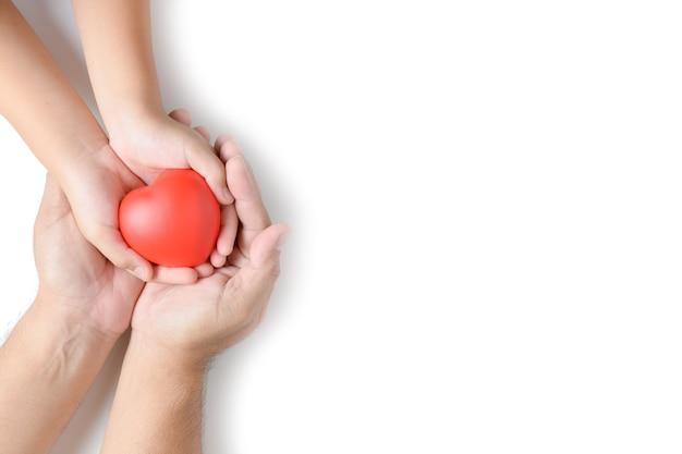 Mani dell'adulto e del bambino che giudicano cuore rosso isolato Foto Premium