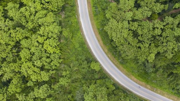 Vista aerea dall'alto di una strada provinciale che passa attraverso una foresta Foto Premium