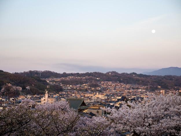 Vista aerea del fiore di ciliegia nella città di kanazawa dal giardino giapponese tradizionale di kenrokuen Foto Premium
