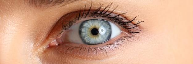 Primo piano blu e verde femminile stupefacente dell'occhio Foto Premium