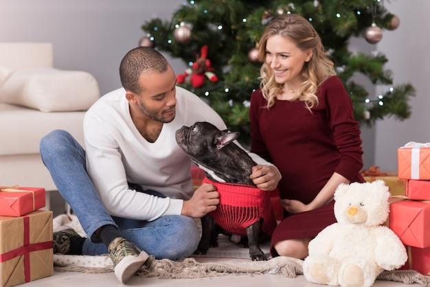 Amanti degli animali. bello attraente uomo premuroso seduto a gambe incrociate e guardando il suo cane mentre celebrava il natale Foto Premium