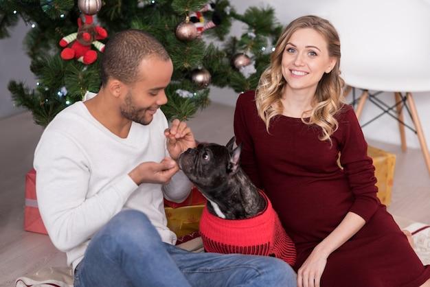 Animali a casa. bel uomo gioioso ottimista guardando il suo cane e sorridendo mentre gioca con lui Foto Premium