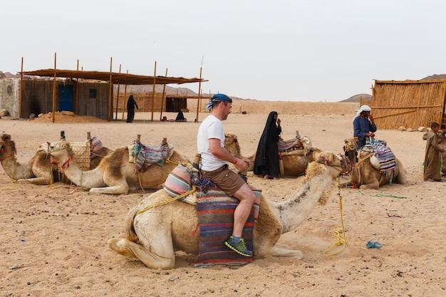 Il ragazzo arabo rotola i turisti su un cammello. Foto Premium