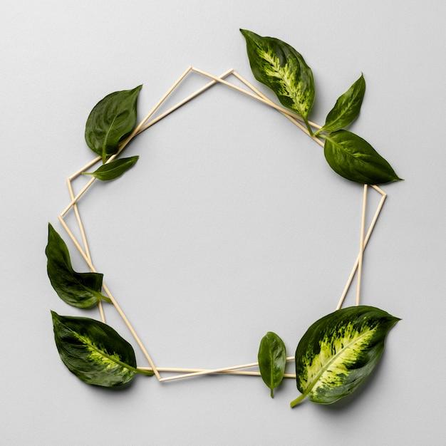 Disposizione della cornice di foglie verdi Foto Premium