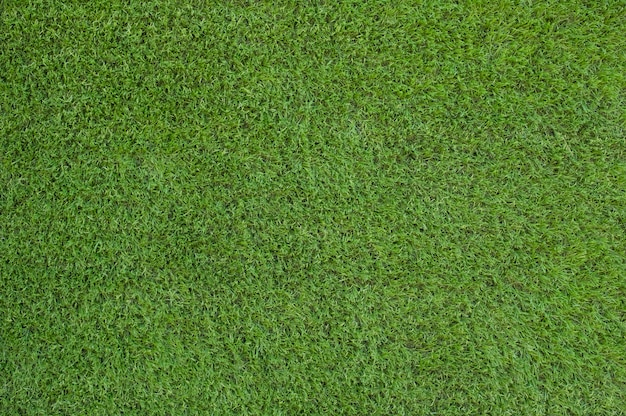 Testo e priorità bassa artificiali dell'erba verde Foto Premium
