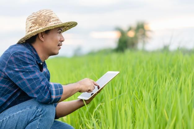 Giovane agricoltore asiatico facendo uso della compressa al campo di riso verde. utilizzando la tecnologia per il concetto di agricoltore intelligente Foto Premium