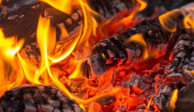 , carbone barbecue, carbone ardente Foto Premium