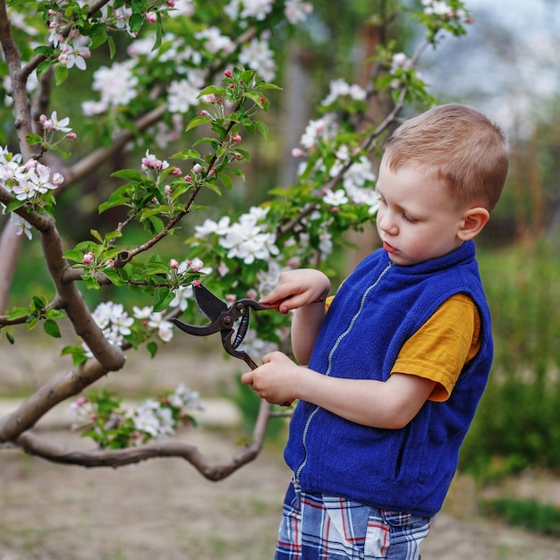 Bello ragazzino biondo che lavora nel giardino di primavera Foto Premium