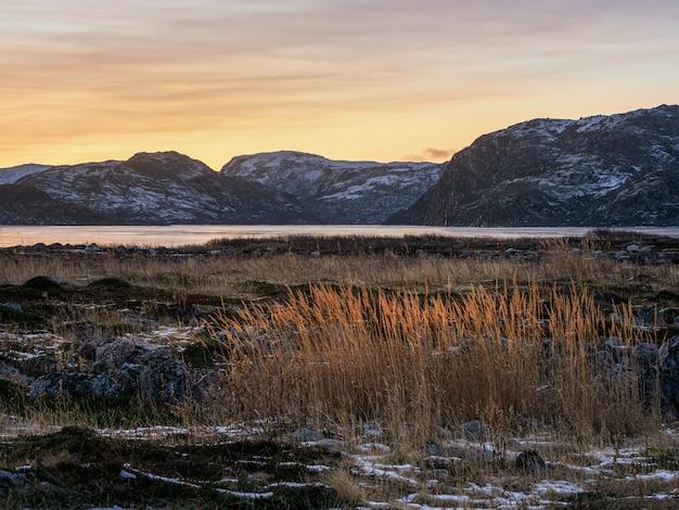 Bellissimo paesaggio polare tramonto con erba rossa nella tundra gelida Foto Premium