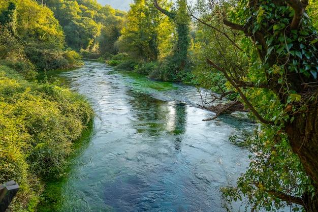 Blue eye è una sorgente d'acqua con portata compresa tra 2 e 18 m3 / s. distretto di delvine, albania. Foto Premium