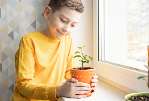 Il ragazzo si prende cura delle piante d'appartamento sul davanzale della finestra a casa Foto Premium