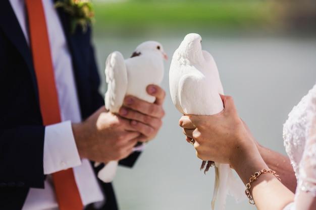Gli sposi tengono colombe bianche sullo sfondo dell'acqua. coppia innamorata Foto Premium