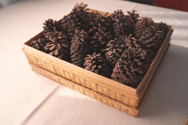 Pigne di brown sulla tavola bianca Foto Premium
