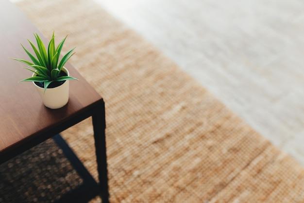 Cactus sul tavolino da caffè in interni. tappeto in terracotta. sfondo sfocato. foto di alta qualità Foto Premium