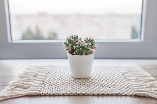 Cactus in vaso sulla stuoia di spago di cotone naturale sul tavolo in legno rustico. stile eco con pianta verde. macrame moderno fatto a mano. concetto di decorazione domestica lavorata a maglia Foto Premium