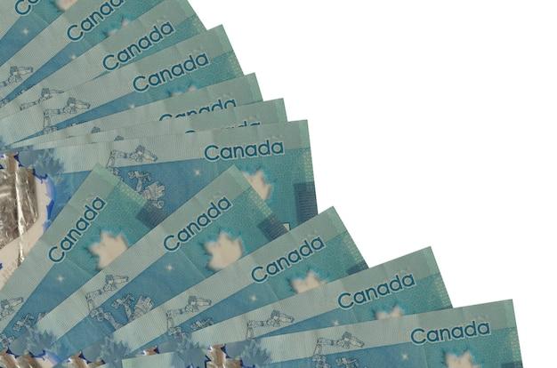 Fatture di dollari canadesi che pongono sulla superficie bianca Foto Premium