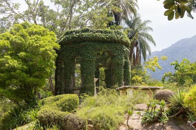 Giardini del palazzo della catetere a rio de janeiro Foto Premium