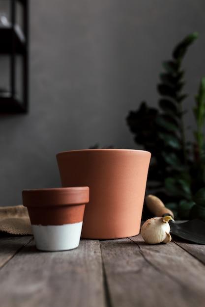 Vasi in ceramica su un vecchio tavolo in legno grigio, bulbi di tulipani. foto di alta qualità Foto Premium