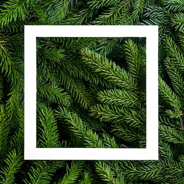 Sfondo di rami di albero di natale. cornice di natale. sfondo di vacanza felice anno nuovo. cornice per albero di natale design per banner, posta Foto Premium