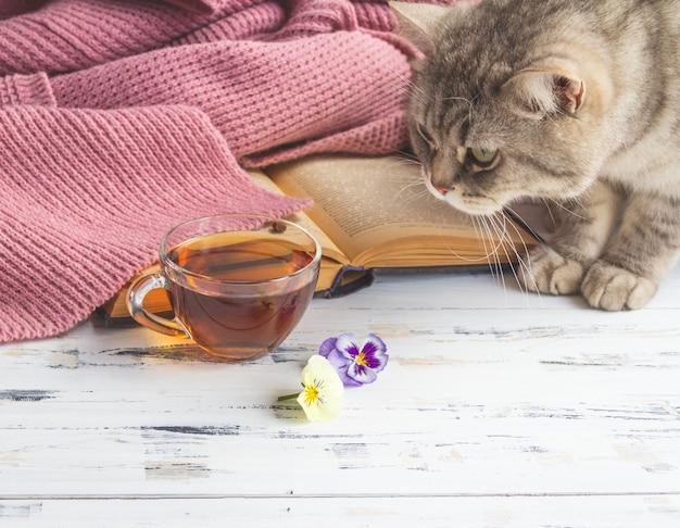 Primo piano di una tazza di tè, del libro aperto e del gatto grigio sulla tavola di legno bianca. spazio copia gratuita. Foto Premium