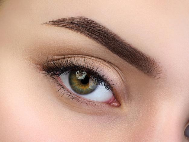 Vista ravvicinata del bellissimo occhio femmina marrone. sopracciglia alla moda perfette. buona visione, lenti a contatto, barra per sopracciglia o concetto di trucco per sopracciglia di moda Foto Premium