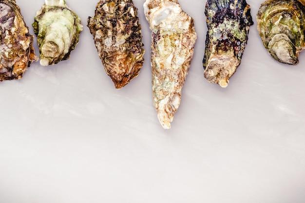 Ostriche chiuse sulla tavola grigia con copyspace Foto Premium