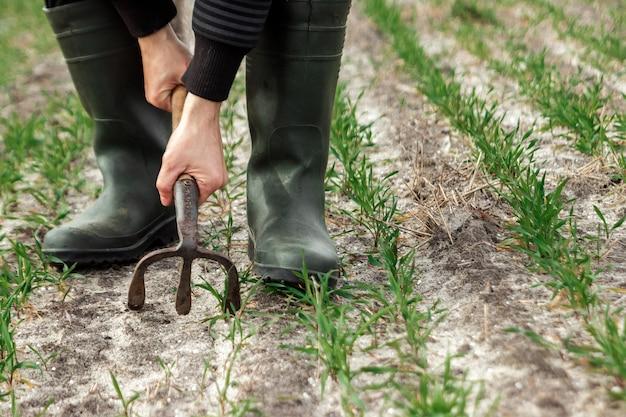 Primo piano delle mani, della zappa e del campo del coltivatore in primavera Foto Premium